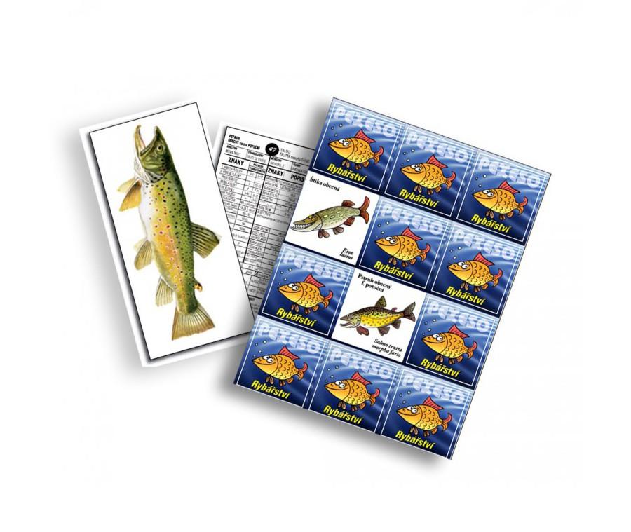 Veselé pexeso a rybí karty