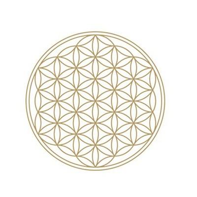 Symbol energie Květ života