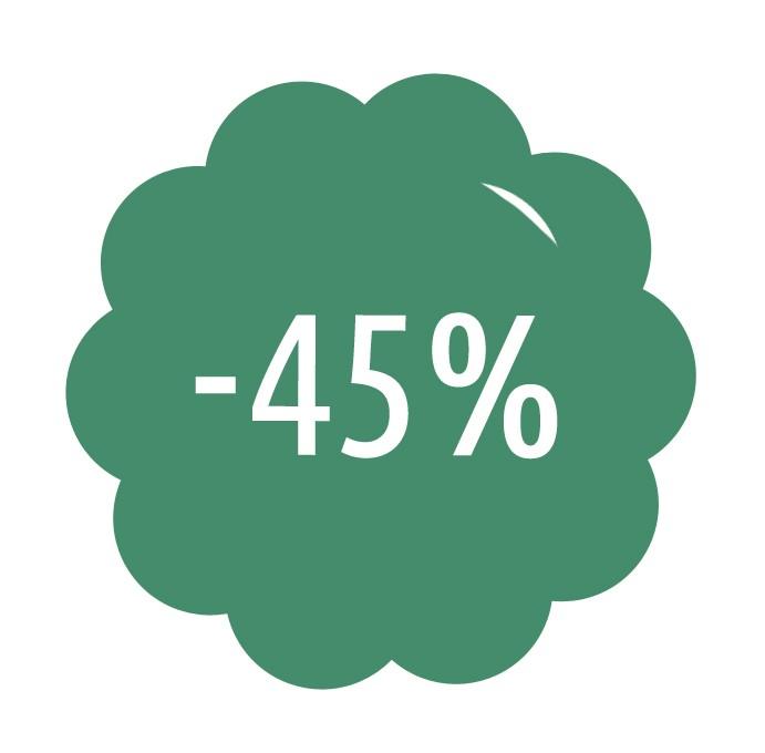 Roční předplatné se slevou 45%