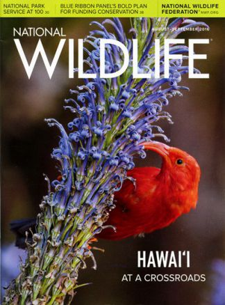 National Wildlife 3/2016