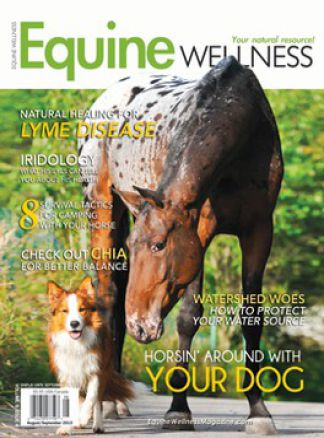 Equine Wellness Magazine 1/2016