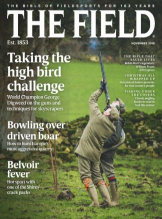The Field 2/2016