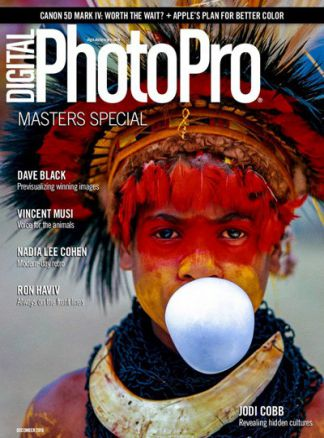 Digital Photo Pro 1/2017