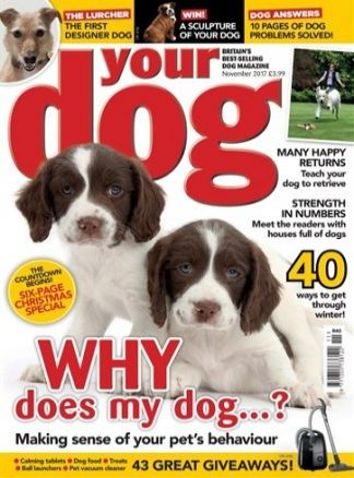 Your Dog 5/2017