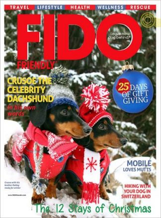 Fido Friendly 1/2018