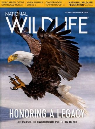 National Wildlife 1/2018
