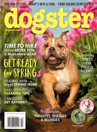 Dogster 1/2020