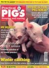 Practical Pigs 1/2014