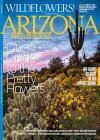 Arizona Highways 1/2014