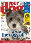 Your Dog 1/2014