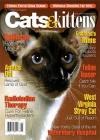 Cats & Kittens 1/2014