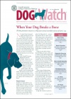 Dog Watch 1/2014