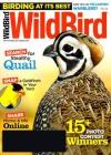 Wild Bird 1/2014