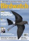 Birdwatch 5/2015