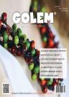 GOLEM 4/2016
