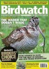 Birdwatch 1/2016