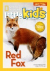 National Geographic Little Kids 3-6 2/2016