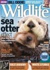 BBC Wildlife 7/2016