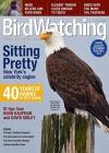 BirdWatching 6/2016