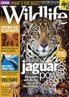BBC Wildlife 9/2016