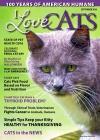 I Love Cats 3/2016