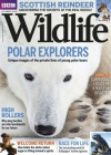 BBC Wildlife 11/2016