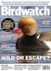 Birdwatch 3/2016