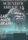 Scientific American 1/2017