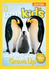 National Geographic Little Kids 3-6 1/2017