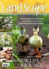 LandScape 1/2017