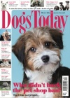 Dogs Today 1/2017