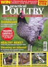Practical Poultry 1/2017