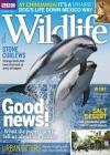 BBC Wildlife 4/2017