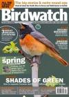 Birdwatch 1/2017