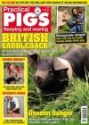 Practical Pigs 2/2017