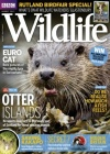 BBC Wildlife 8/2017