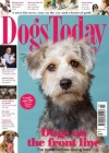 Dogs Today 3/2017