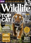 BBC Wildlife 9/2017