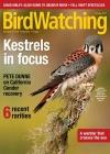 BirdWatching 4/2017