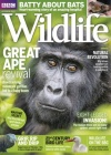BBC Wildlife 10/2017