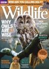 BBC Wildlife 11/2017