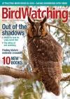 BirdWatching 5/2017
