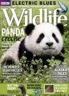 BBC Wildlife 12/2017