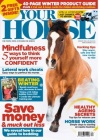 Your Horse 11/2017
