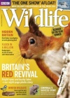 BBC Wildlife 1/2018