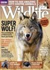 BBC Wildlife 2/2018