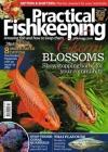 Practical Fishkeeping 1/2018
