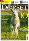 Dorset 1/2018