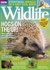 BBC Wildlife 3/2018