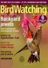 BirdWatching 2/2018